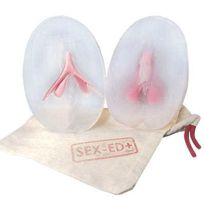 Vulve avec clitoris amovible - Modèle 2 - Silicone/ plastique